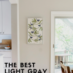 The Best Light Gray Paint Colors for Walls